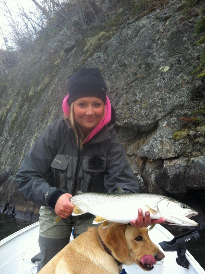 fall superior lake trout
